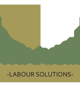 Titanium Labour Solutions